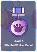 Medal6